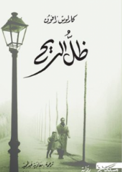 ظل الريح (مقبرة الكتب المنسية #1)